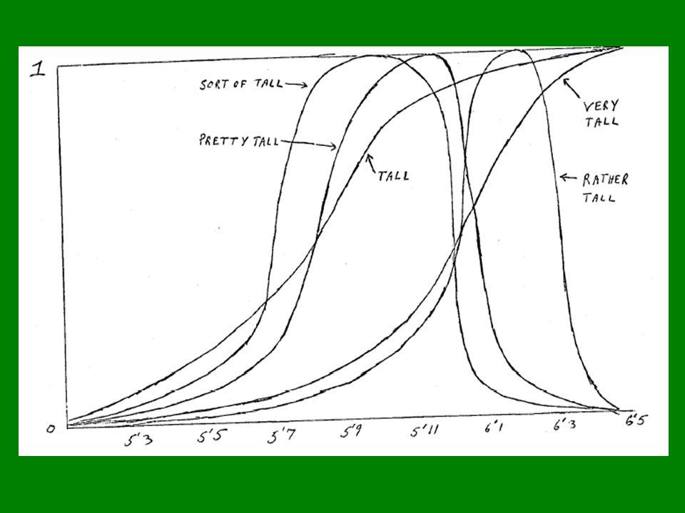 - vágnost x exaktní formalismus – nepřekonatelný rozpor.