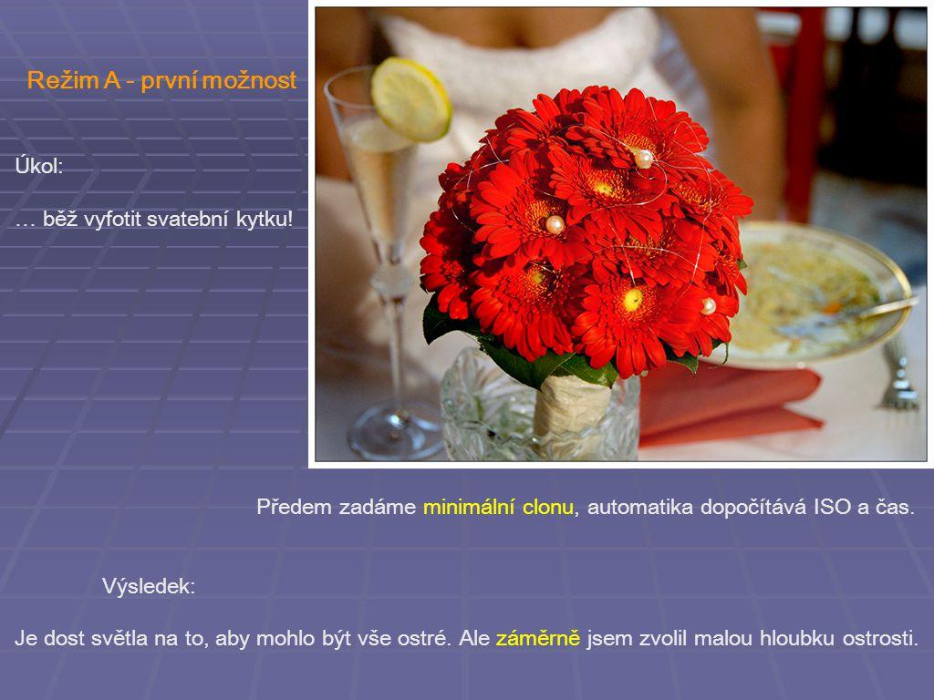 Režim A - první možnost Úkol: … běž vyfotit svatební kytku.