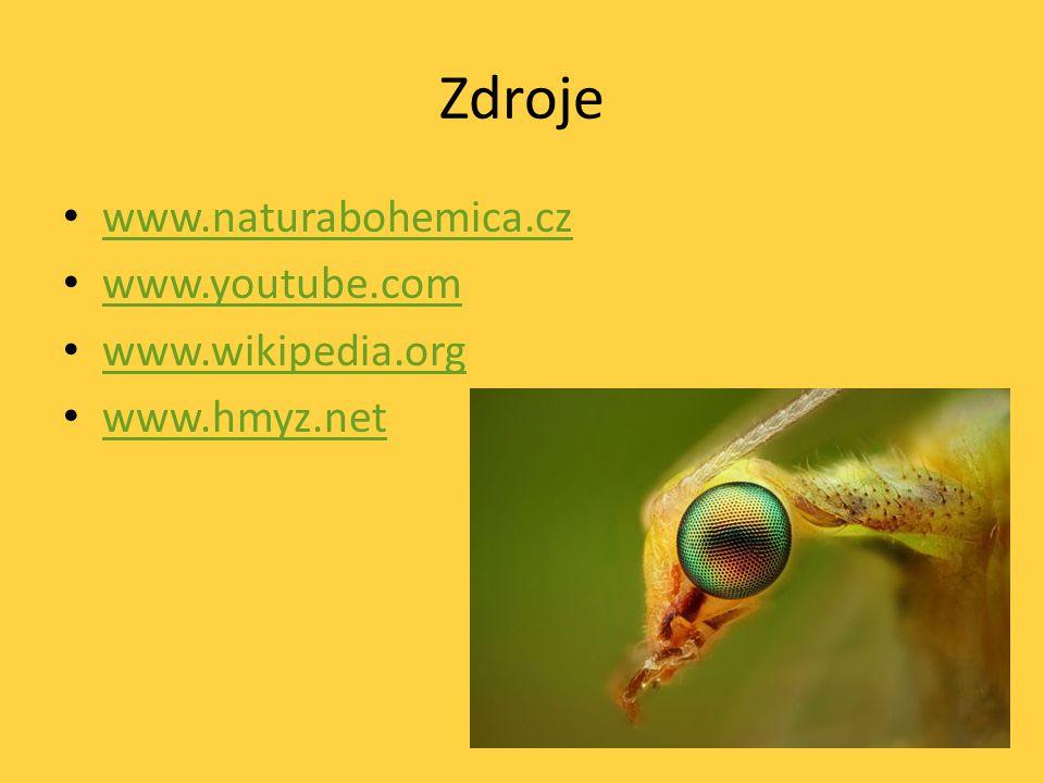 Zdroje www.naturabohemica.cz www.youtube.com www.wikipedia.org www.hmyz.net
