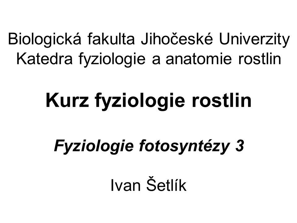 Biologická fakulta Jihočeské Univerzity Katedra fyziologie a anatomie rostlin Kurz fyziologie rostlin Fyziologie fotosyntézy 3 Ivan Šetlík