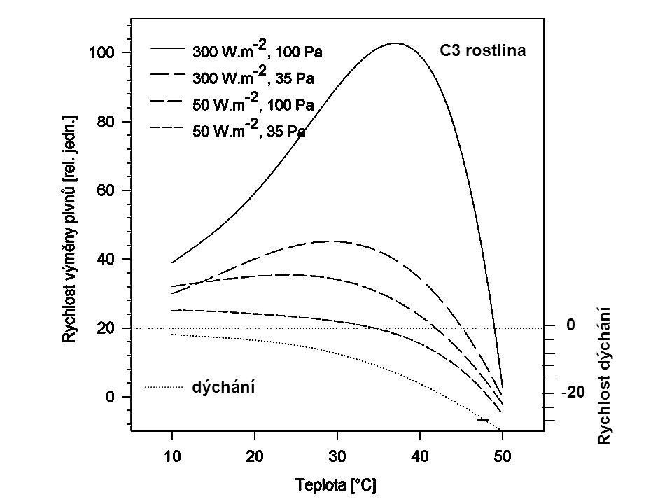 dýchání 0 -20 Rychlost dýchání dýchání C3 rostlina