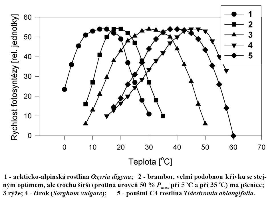 1 ‑ arkticko-alpinská rostlina Oxyria digyna; 2 ‑ brambor, velmi podobnou křivku se stej- ným optimem, ale trochu širší (protíná úroveň 50 % P max při