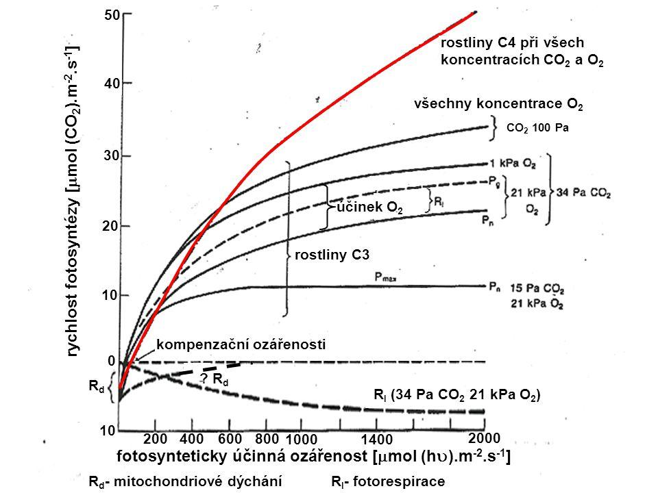 rychlost fotosyntézy [  mol (CO 2 ).m -2.s -1 ] RdRd .