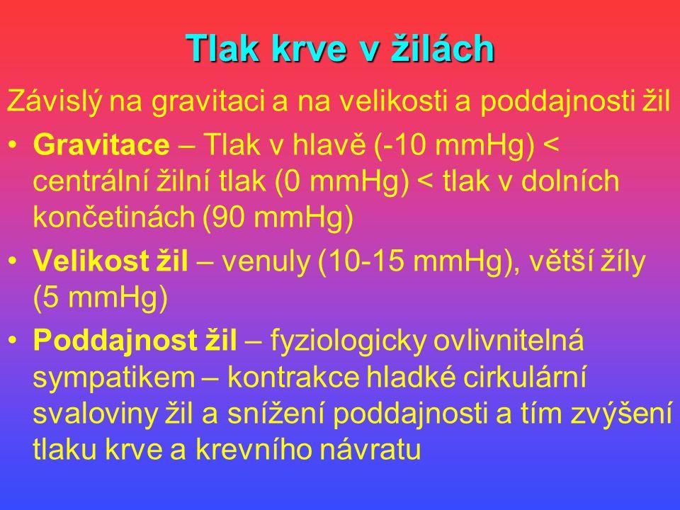 Tlak krve v žilách Závislý na gravitaci a na velikosti a poddajnosti žil Gravitace – Tlak v hlavě (-10 mmHg) < centrální žilní tlak (0 mmHg) < tlak v