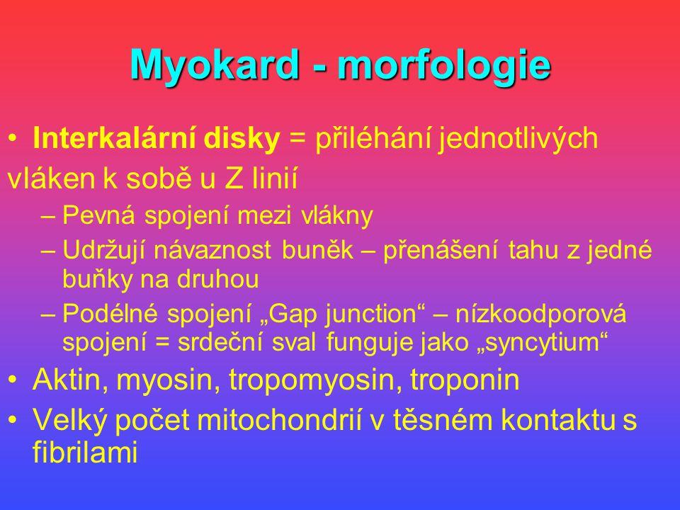 Myokard - morfologie Interkalární disky = přiléhání jednotlivých vláken k sobě u Z linií –Pevná spojení mezi vlákny –Udržují návaznost buněk – přenáše