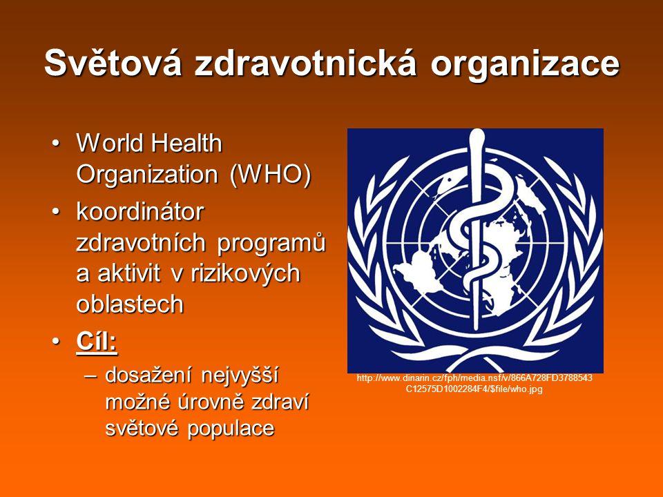 Světová zdravotnická organizace World Health Organization (WHO)World Health Organization (WHO) koordinátor zdravotních programů a aktivit v rizikových