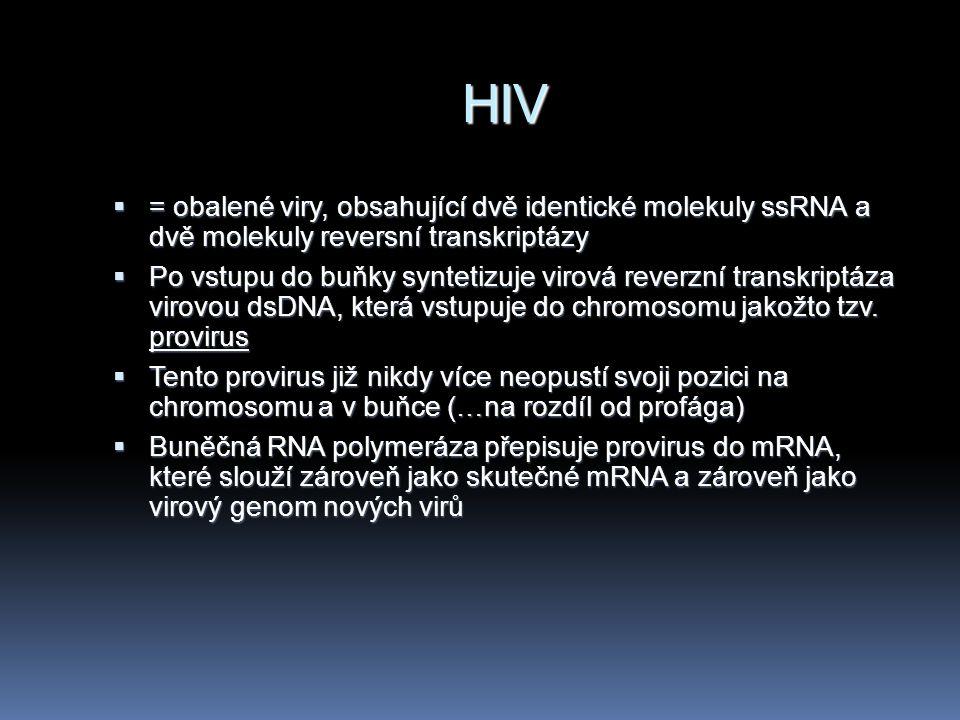 HIV  = obalené viry, obsahující dvě identické molekuly ssRNA a dvě molekuly reversní transkriptázy  Po vstupu do buňky syntetizuje virová reverzní t