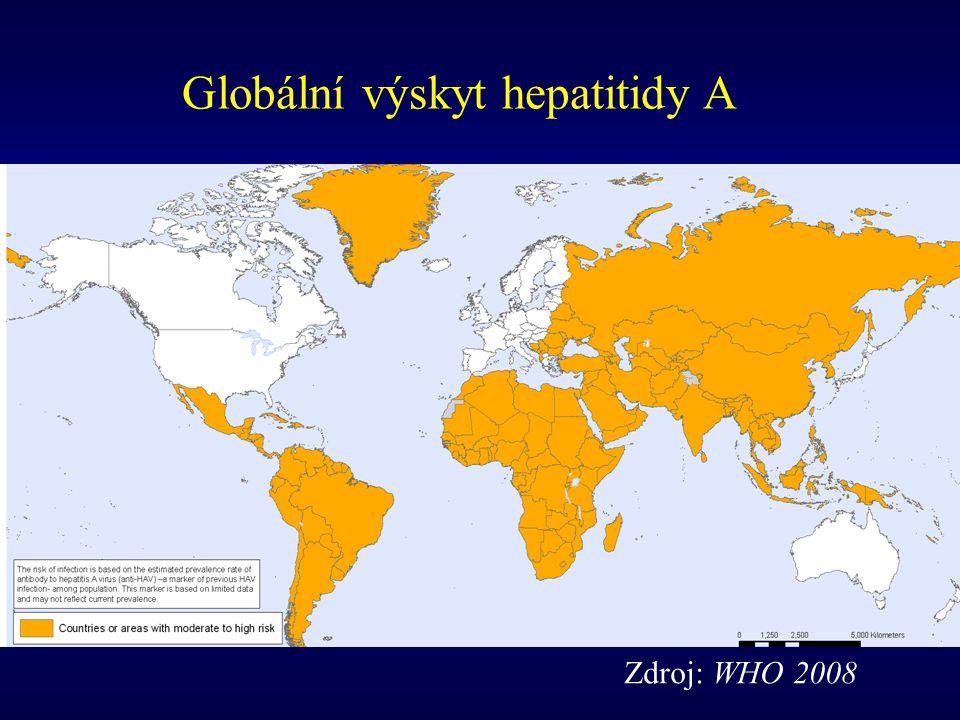 Zdroj: WHO 2008 Globální výskyt hepatitidy A