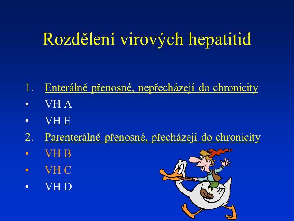 Rozdělení virových hepatitid 1.Enterálně přenosné, nepřecházejí do chronicity VH A VH E 2.Parenterálně přenosné, přecházejí do chronicity VH B VH C VH