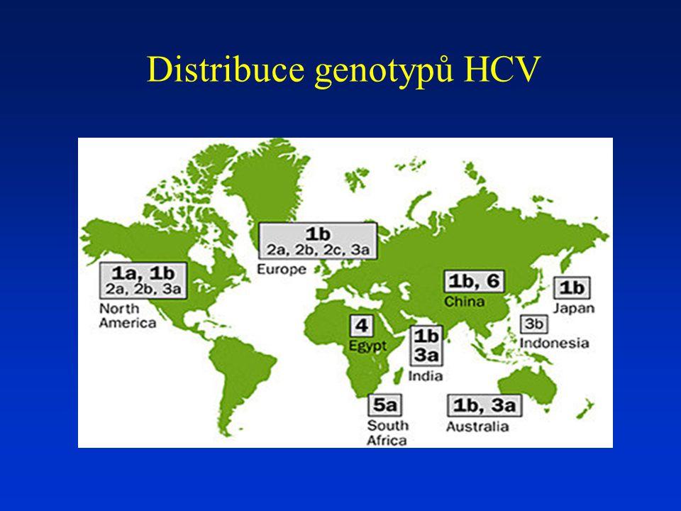 Distribuce genotypů HCV