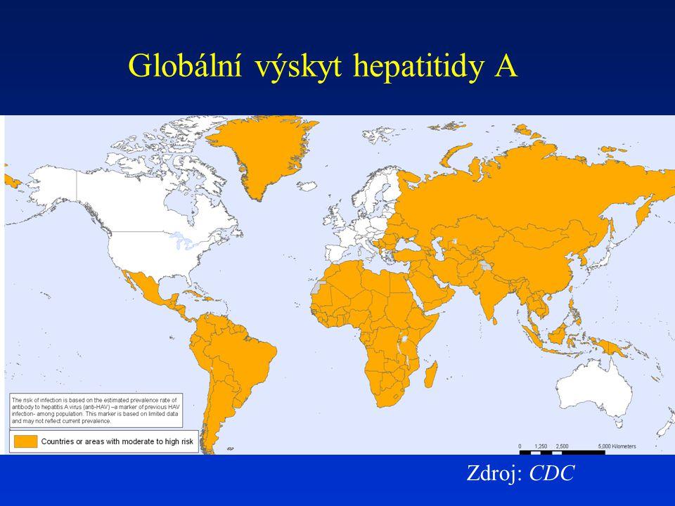 Epidemiologie VH B Přenos krví a krevními produkty sexuálním stykem orgánovými a tkáňovými transplantáty vertikálně kontaminovanými jehlami a stříkačkami Kdo je především v riziku infekce v rozvinutých zemích.