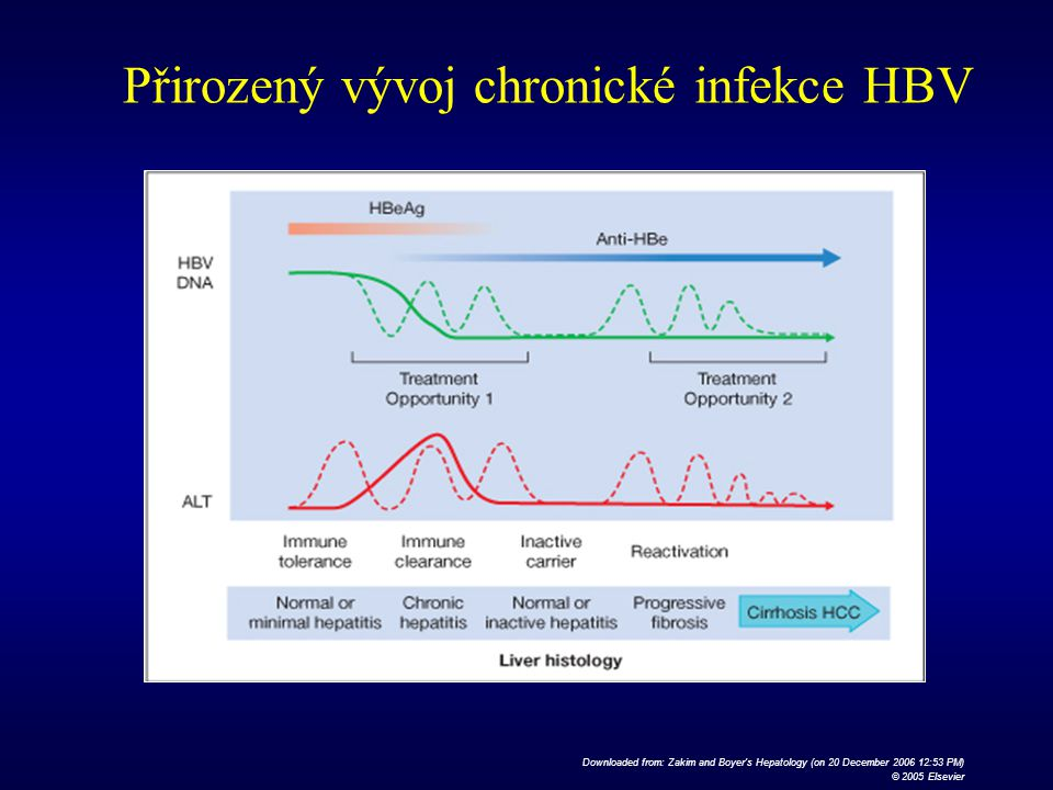 Downloaded from: Zakim and Boyer's Hepatology (on 20 December 2006 12:53 PM) © 2005 Elsevier Přirozený vývoj chronické infekce HBV
