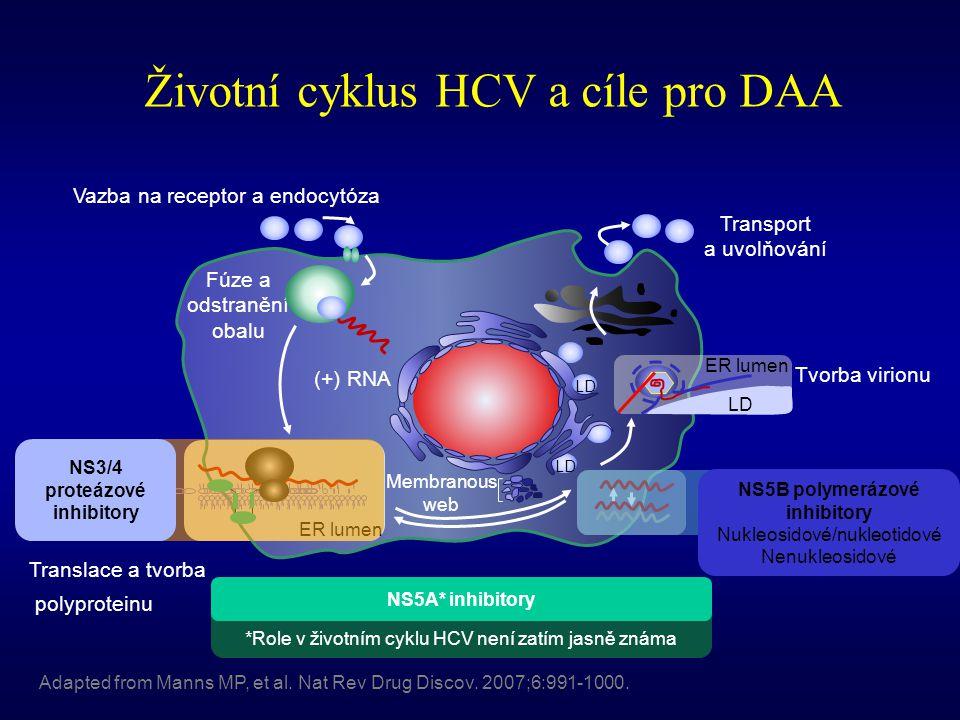 Životní cyklus HCV a cíle pro DAA Adapted from Manns MP, et al. Nat Rev Drug Discov. 2007;6:991-1000. Vazba na receptor a endocytóza Fúze a odstranění