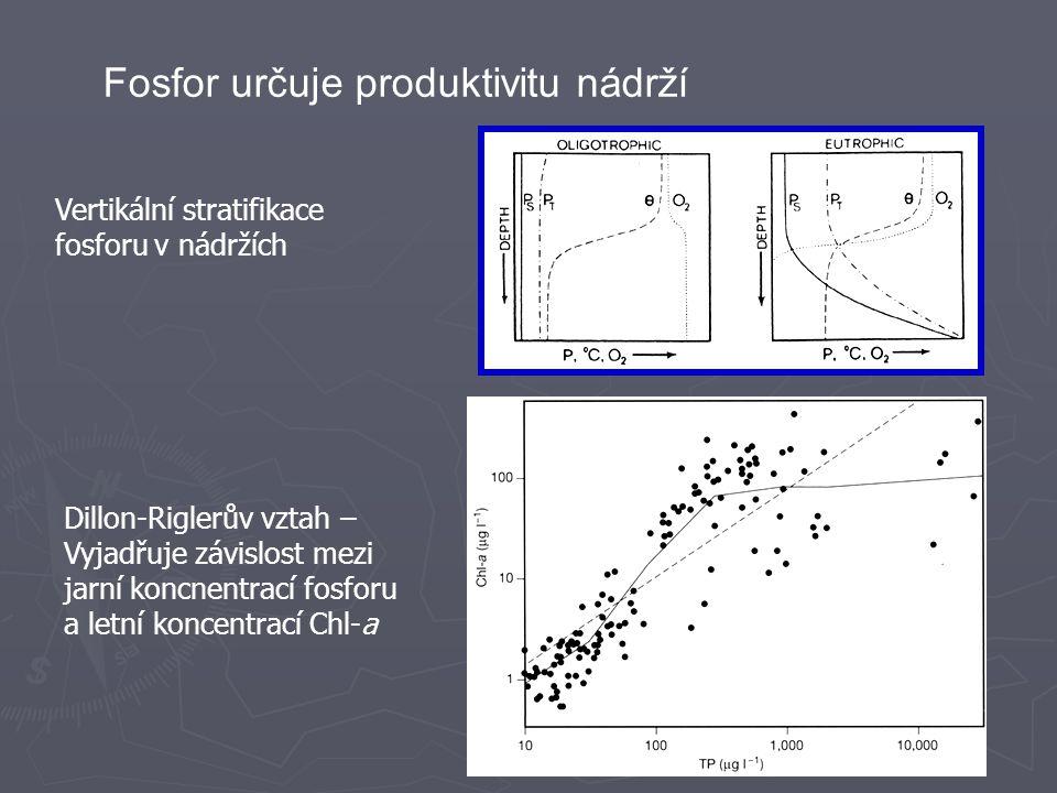 Fosfor určuje produktivitu nádrží Vertikální stratifikace fosforu v nádržích Dillon-Riglerův vztah – Vyjadřuje závislost mezi jarní koncnentrací fosforu a letní koncentrací Chl-a
