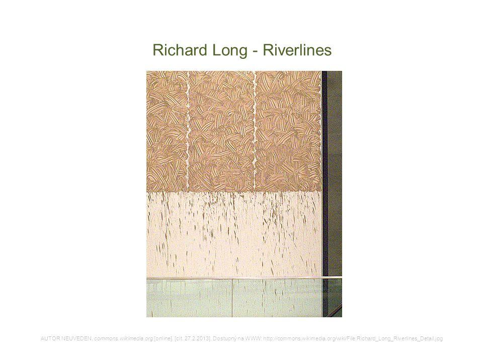 Richard Long - Riverlines AUTOR NEUVEDEN. commons.wikimedia.org [online]. [cit. 27.2.2013]. Dostupný na WWW: http://commons.wikimedia.org/wiki/File:Ri