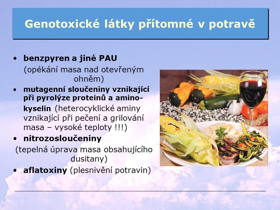 Genotoxické látky přítomné v potravě benzpyren a jiné PAU (opékání masa nad otevřeným ohněm) mutagenní sloučeniny vznikající při pyrolýze proteinů a a