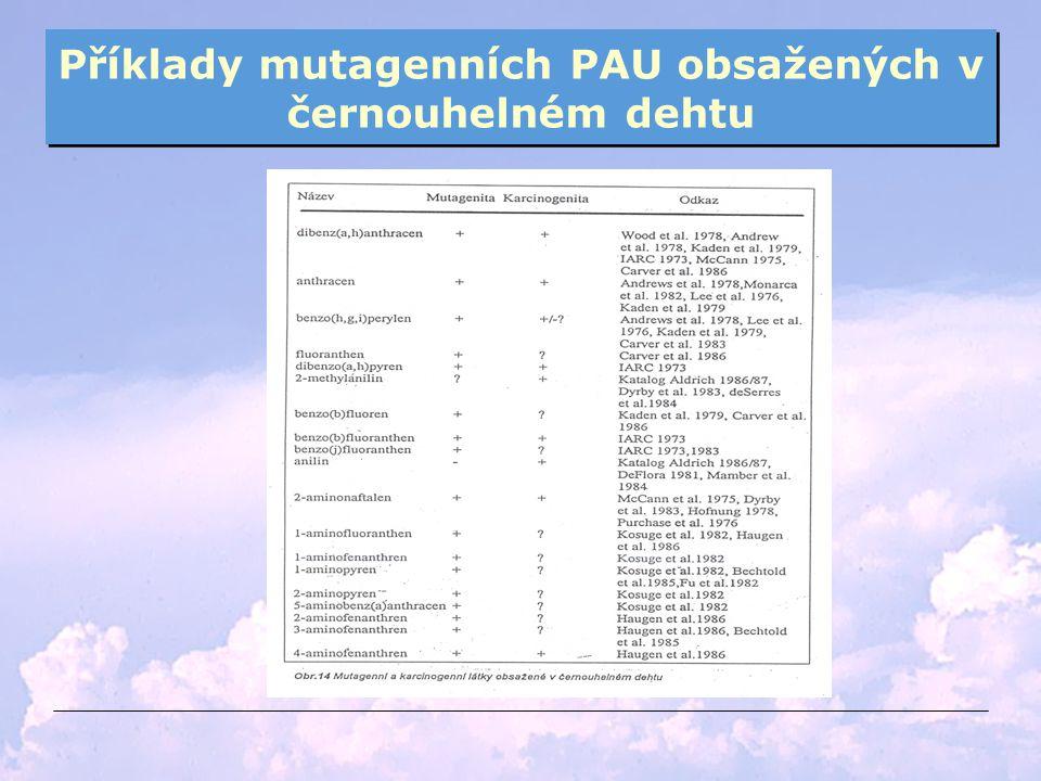 Příklady mutagenních PAU obsažených v černouhelném dehtu
