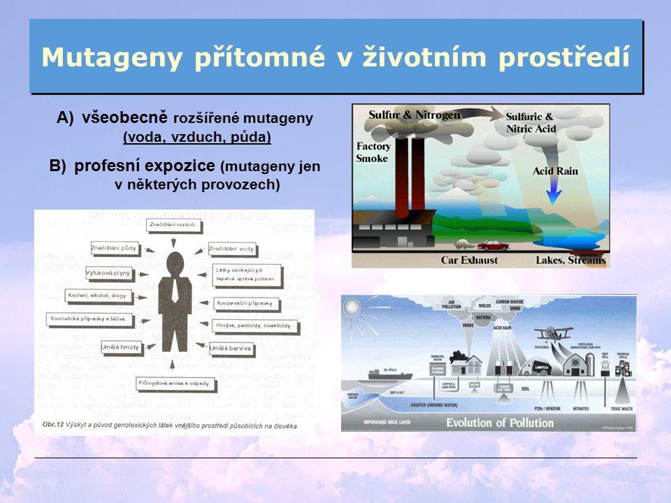 Mutageny přítomné v životním prostředí A)všeobecně rozšířené mutageny (voda, vzduch, půda) B)profesní expozice (mutageny jen v některých provozech)