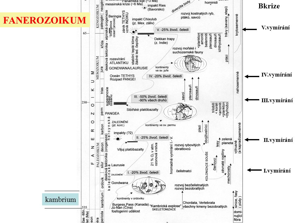 I.vymírání V.vymírání IV.vymírání II.vymírání III.vymírání Bkrize FANEROZOIKUM kambrium