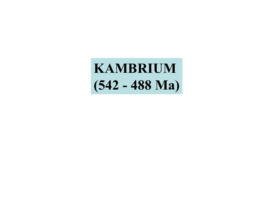 KAMBRIUM (542 - 488 Ma)