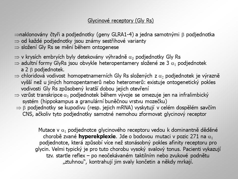  naklonovány čtyři a podjednotky (geny GLRA1-4) a jedna samotnými  podjednotka  od každé podjednotky jsou známy sestřihové varianty  složení Gly R