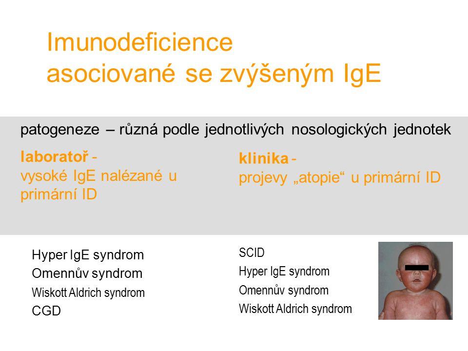Imunodeficience asociované se zvýšeným IgE patogeneze – různá podle jednotlivých nosologických jednotek Hyper IgE syndrom Omennův syndrom Wiskott Aldr