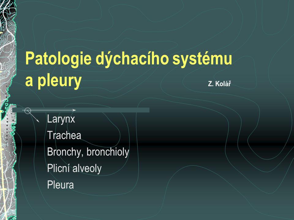 Patologie laryngu (hrtanu) a trachey (průdušnice) Vývojové anomálie tracheoesofageální píštěl : vzácná, možnost aspirace potravy esofageální atresie spojená s tracheoesofageální píštělí : častější a závažnější Různé léze trauma (iatrogenní, tracheostomie), komprese průdušnice (nejčastěji z důvodu expanzivního procesu ve štítné žláze), zaklínění cizích těles (nejčastěji potrava) Patologie dýchacího systému a pleury
