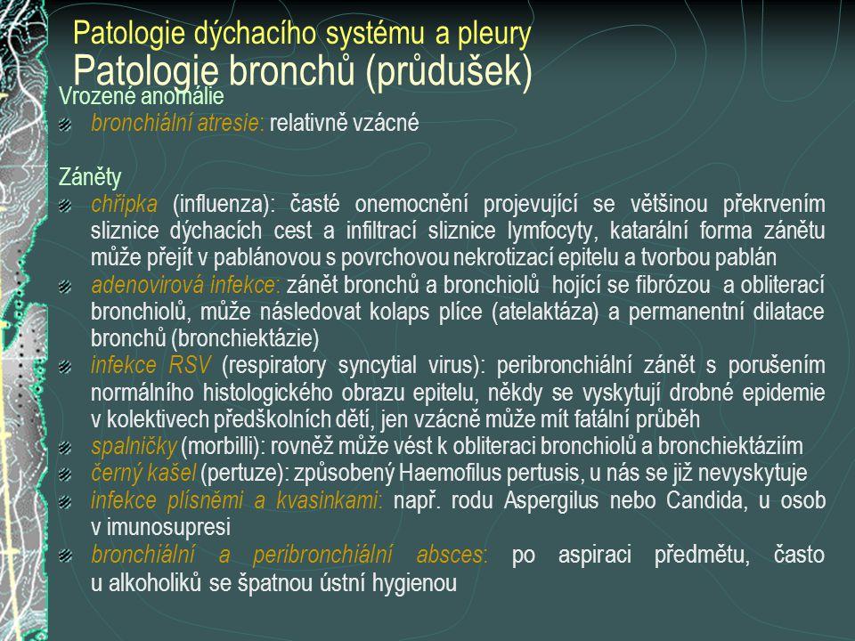 Patologie bronchů (průdušek) Vrozené anomálie bronchiální atresie : relativně vzácné Záněty chřipka (influenza): časté onemocnění projevující se větši