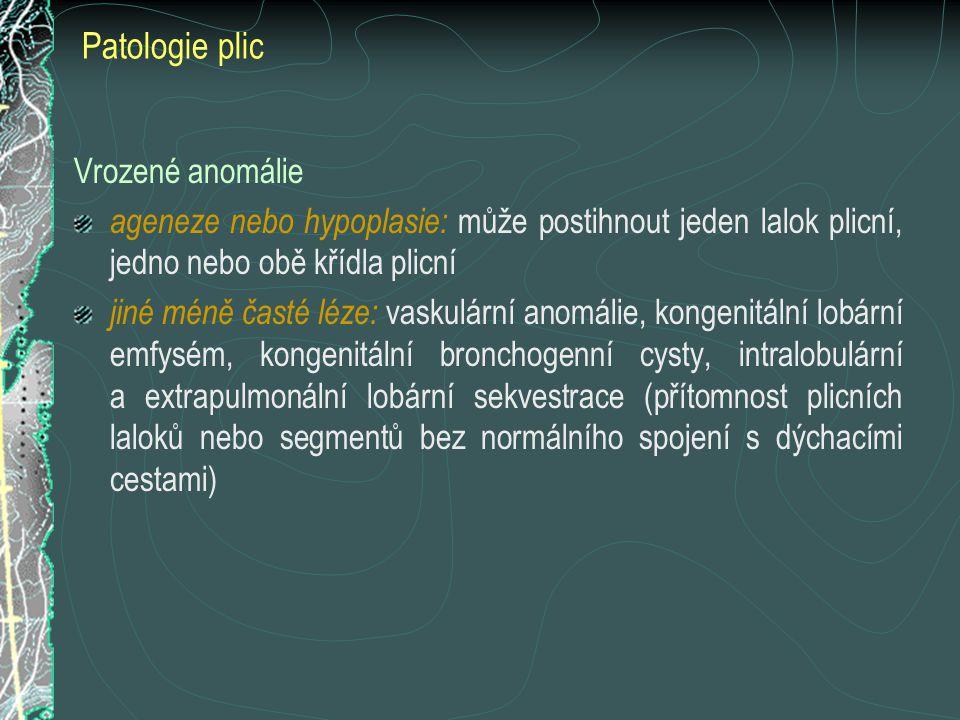 Patologie plic Vrozené anomálie ageneze nebo hypoplasie: může postihnout jeden lalok plicní, jedno nebo obě křídla plicní jiné méně časté léze: vaskul