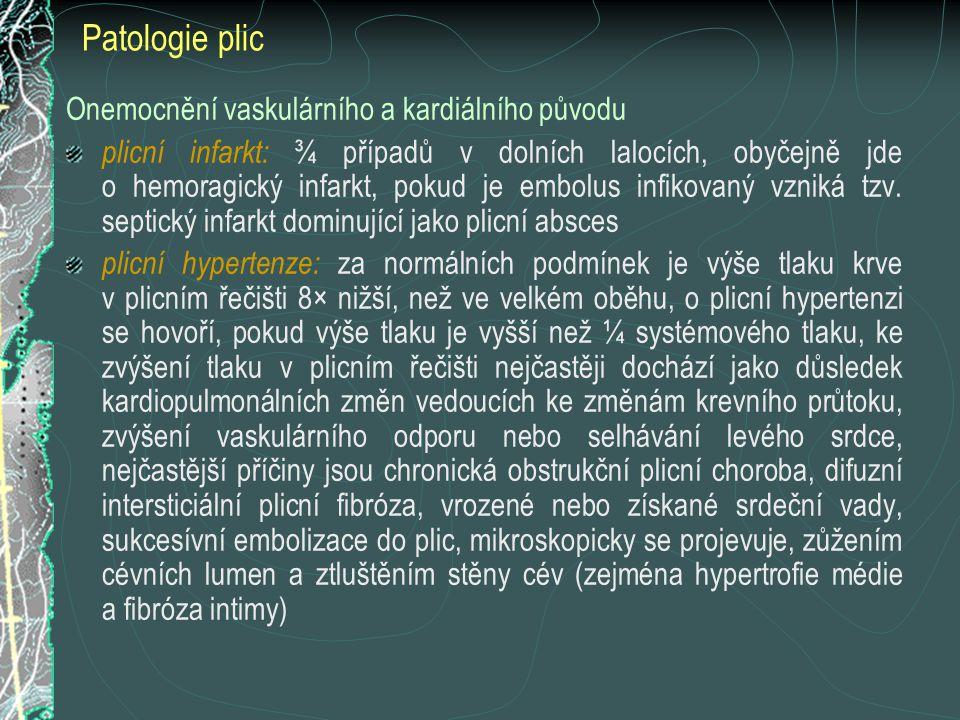 Patologie plic Onemocnění vaskulárního a kardiálního původu plicní infarkt: ¾ případů v dolních lalocích, obyčejně jde o hemoragický infarkt, pokud je