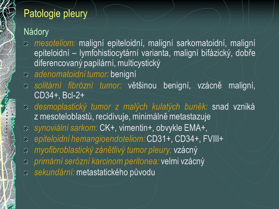 Nádory mesoteliom: maligní epiteloidní, maligní sarkomatoidní, maligní epiteloidní – lymfohistiocytární varianta, maligní bifázický, dobře diferencova