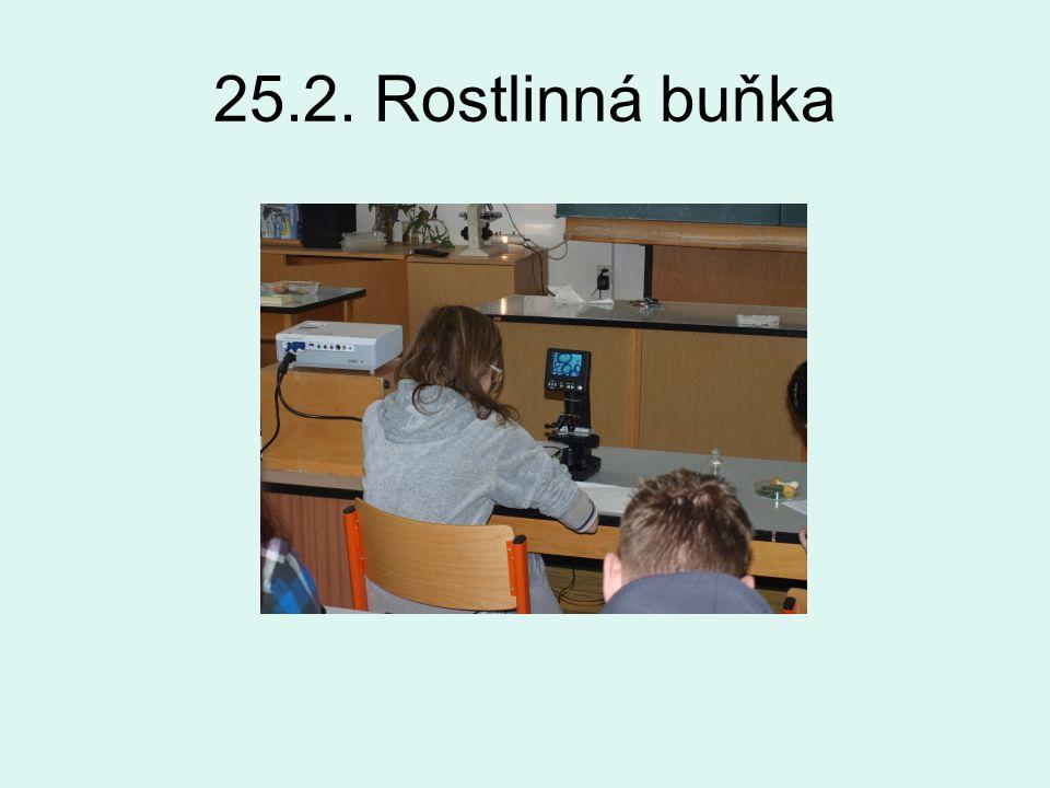 25.2. Rostlinná buňka