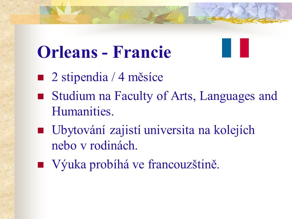 Orleans - Francie 2 stipendia / 4 měsíce Studium na Faculty of Arts, Languages and Humanities.