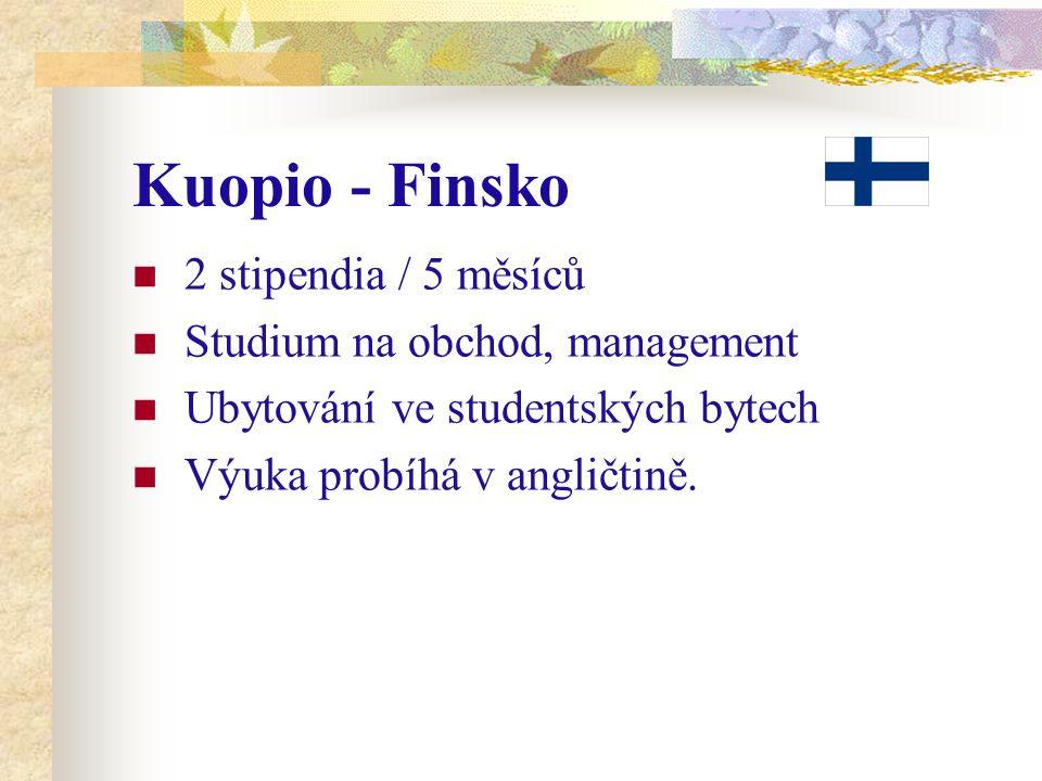 Kuopio - Finsko 2 stipendia / 5 měsíců Studium na obchod, management Ubytování ve studentských bytech Výuka probíhá v angličtině.