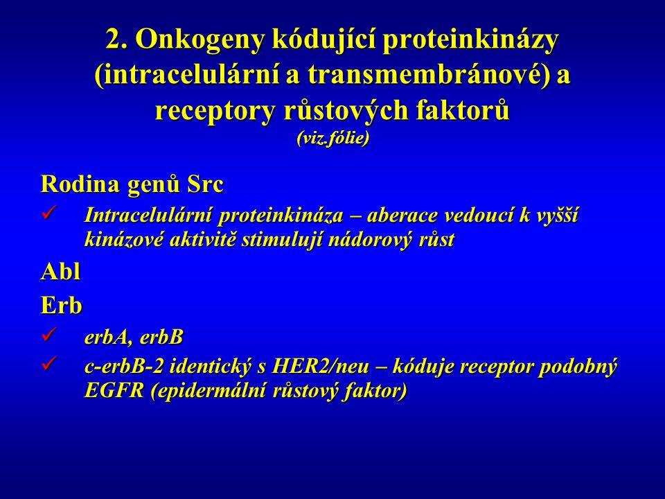 2. Onkogeny kódující proteinkinázy (intracelulární a transmembránové) a receptory růstových faktorů (viz.fólie) Rodina genů Src Intracelulární protein