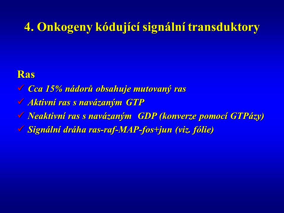 4. Onkogeny kódující signální transduktory Ras Cca 15% nádorů obsahuje mutovaný ras Cca 15% nádorů obsahuje mutovaný ras Aktivní ras s navázaným GTP A