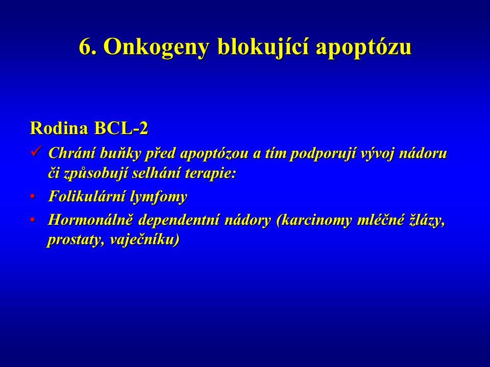 6. Onkogeny blokující apoptózu Rodina BCL-2 Chrání buňky před apoptózou a tím podporují vývoj nádoru či způsobují selhání terapie: Chrání buňky před a