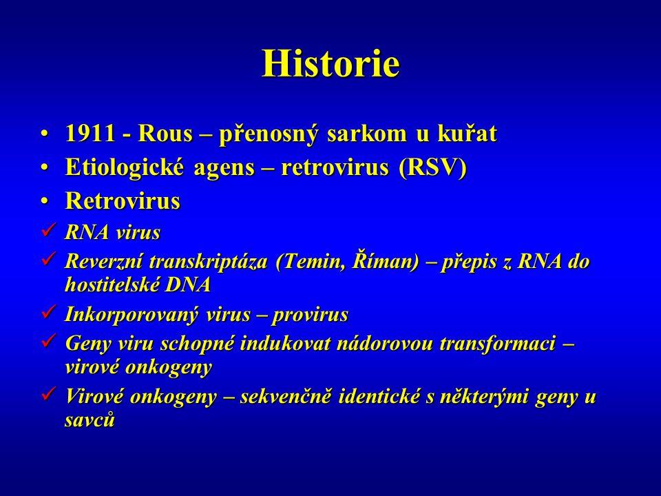 Historie 1911 - Rous – přenosný sarkom u kuřat1911 - Rous – přenosný sarkom u kuřat Etiologické agens – retrovirus (RSV)Etiologické agens – retrovirus (RSV) RetrovirusRetrovirus RNA virus RNA virus Reverzní transkriptáza (Temin, Říman) – přepis z RNA do hostitelské DNA Reverzní transkriptáza (Temin, Říman) – přepis z RNA do hostitelské DNA Inkorporovaný virus – provirus Inkorporovaný virus – provirus Geny viru schopné indukovat nádorovou transformaci – virové onkogeny Geny viru schopné indukovat nádorovou transformaci – virové onkogeny Virové onkogeny – sekvenčně identické s některými geny u savců Virové onkogeny – sekvenčně identické s některými geny u savců