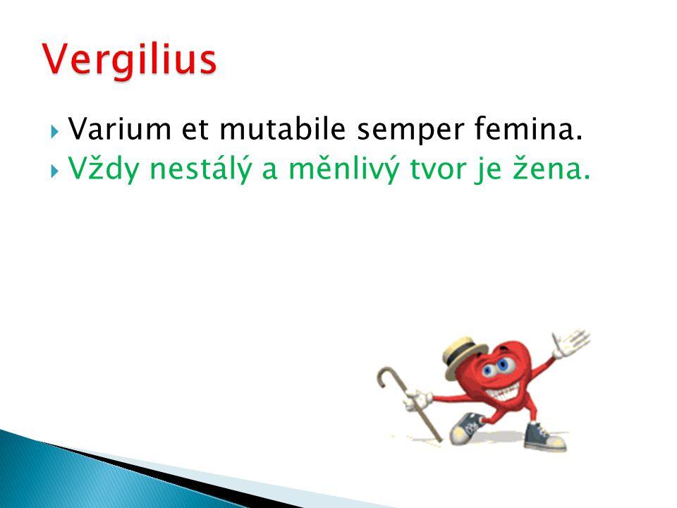  Varium et mutabile semper femina.  Vždy nestálý a měnlivý tvor je žena.