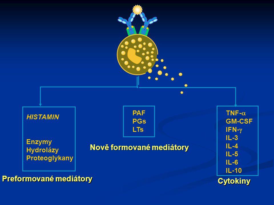 HISTAMIN Enzymy Hydrolázy Proteoglykany PAF PGs LTs TNF-  GM-CSF IFN-  IL-3 IL-4 IL-5 IL-6 IL-10 Preformované mediátory Nově formované mediátory Cytokiny