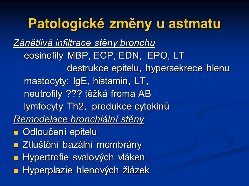 Patologické změny u astmatu Zánětlivá infiltrace stěny bronchu eosinofily MBP, ECP, EDN, EPO, LT eosinofily MBP, ECP, EDN, EPO, LT destrukce epitelu, hypersekrece hlenu destrukce epitelu, hypersekrece hlenu mastocyty: IgE, histamin, LT, mastocyty: IgE, histamin, LT, neutrofily ??.