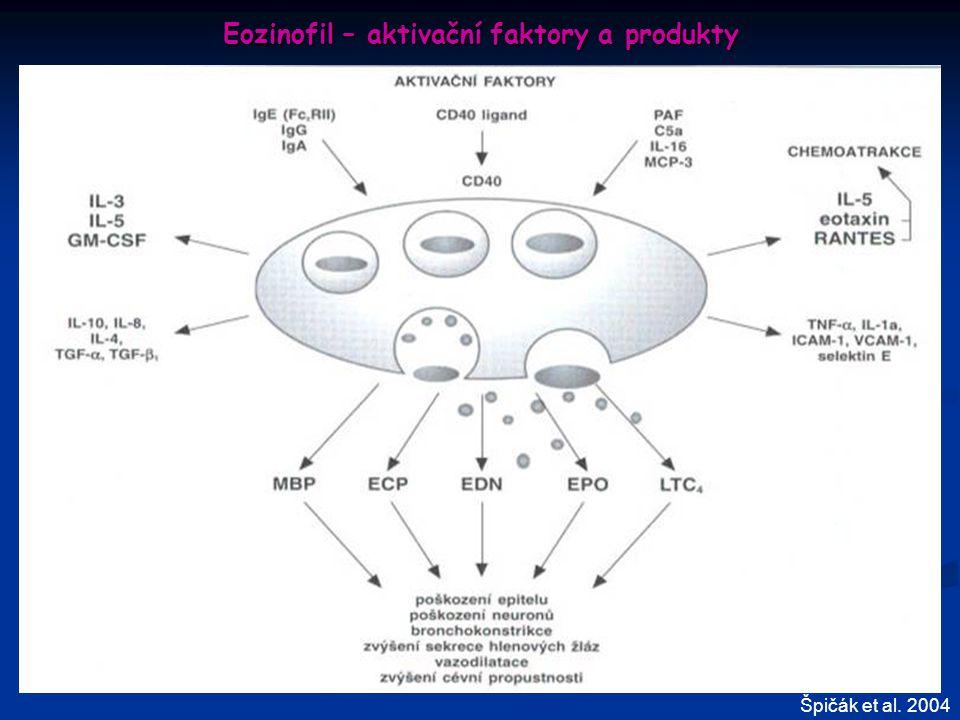 Eozinofil – aktivační faktory a produkty Špičák et al. 2004