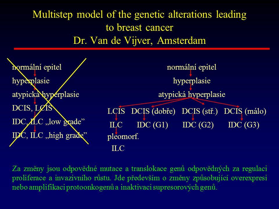 Multistep model of the genetic alterations leading to breast cancer Dr. Van de Vijver, Amsterdam Za změny jsou odpovědné mutace a translokace genů odp