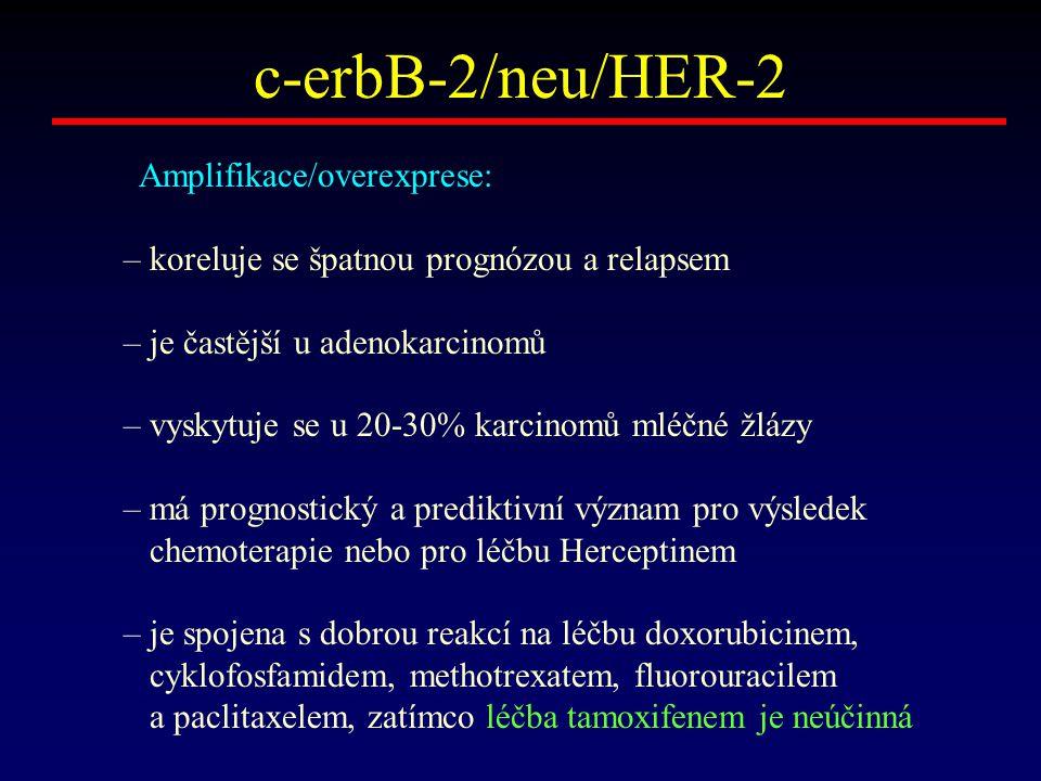 c-erbB-2/neu/HER-2 Amplifikace/overexprese: – koreluje se špatnou prognózou a relapsem – je častější u adenokarcinomů – vyskytuje se u 20-30% karcinom