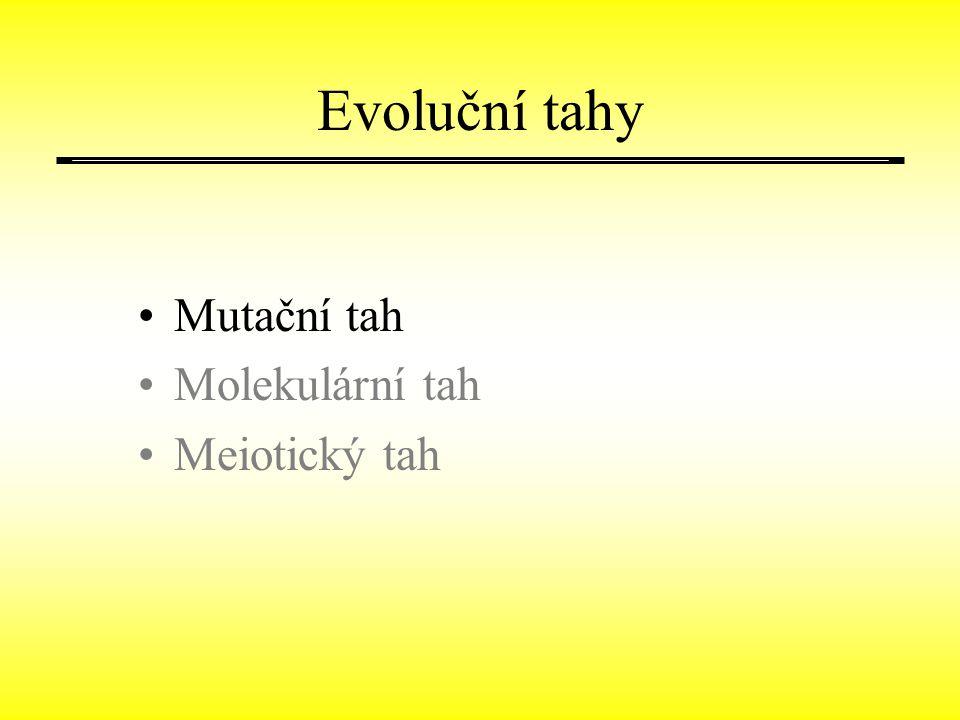 Evoluční tahy Mutační tah Molekulární tah Meiotický tah
