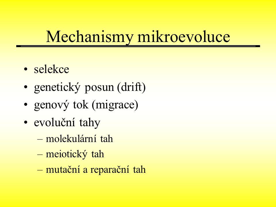 Mechanismy mikroevoluce selekce genetický posun (drift) genový tok (migrace) evoluční tahy –molekulární tah –meiotický tah –mutační a reparační tah
