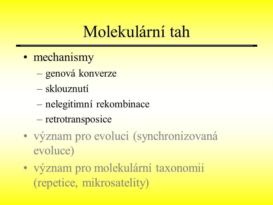 Molekulární tah mechanismy –genová konverze –sklouznutí –nelegitimní rekombinace –retrotransposice význam pro evoluci (synchronizovaná evoluce) význam