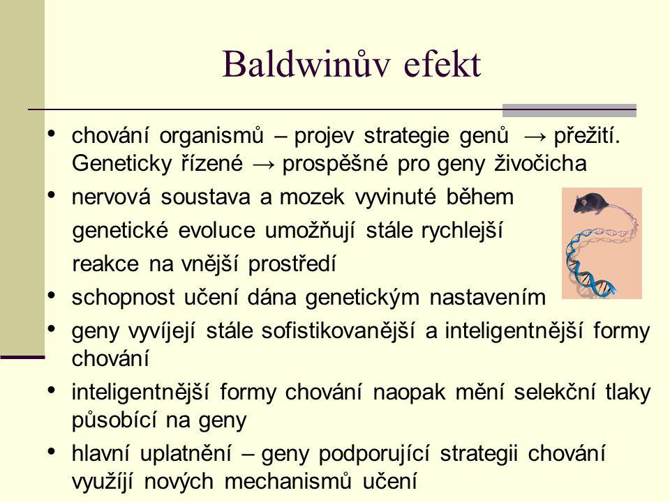 """Baldwinův efekt učení mění selekční tlaky → dochází k evoluci organismů rychleji se přizpůsobujících prostředí tento efekt, kterým učení působí na evoluční algoritmus – Baldwinův efekt """"Čím větší schopnost jedince přizpůsobit se vnějším podmínkám, tím větší je jeho zdatnost, tj."""