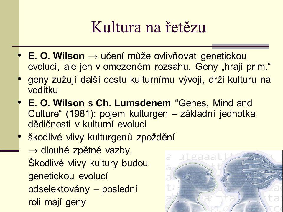"""Kultura na řetězu E. O. Wilson → učení může ovlivňovat genetickou evoluci, ale jen v omezeném rozsahu. Geny """"hrají prim."""" geny zužují další cestu kult"""