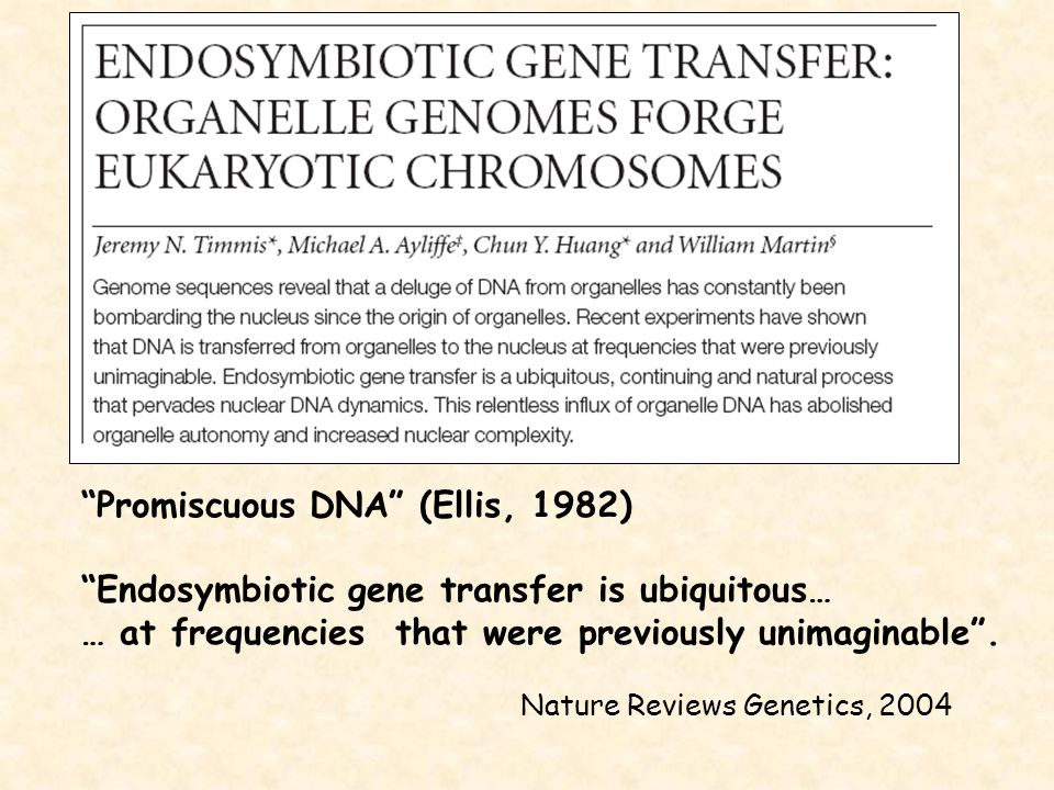 """""""Promiscuous DNA"""" (Ellis, 1982) """"Endosymbiotic gene transfer is ubiquitous… … at frequencies that were previously unimaginable"""". Nature Reviews Geneti"""